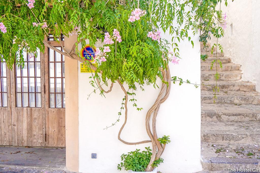 Ibiza Town - A Day in Eivissa -23